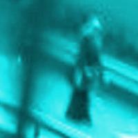 <!--:cs-->V Británii zavraždili muslimskou studentku, islamofobové jsou i v České republice<!--:-->