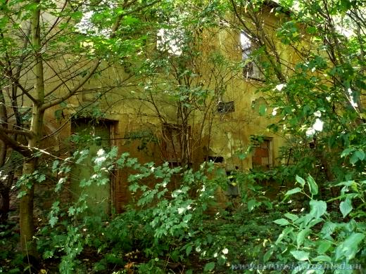 Opuštěný dům kousek od Řízkárny.