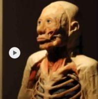 Zeman omylem prodal Ovčáčkovo tělo na výstavu Body The Exhibition