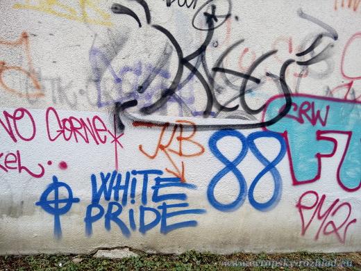 """Známky toho, že oblast je vyhledávanou destinací sprejera z řad radikální pravice - nápis White Pride 88, což znamená Bílá hrdost a dvě osmičky znázorňují """"HH"""", neboli Heil Hitler, neonacistický pozdrav."""