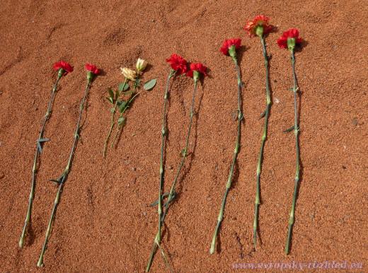 Květiny padlým vojákům.
