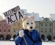 <!--:cs-->V Českých Budějovících podpálili dohodu ACTA<!--:-->