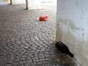 Novoroční zvratky a kdo je uklidí…